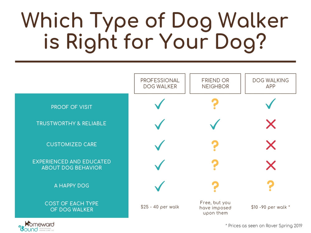 Dog Walker in the Lakes Region vs. Rover, Wag! Uber like On demand apps vs friend or neighbor