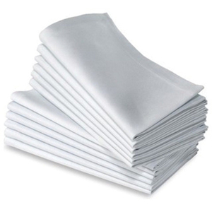 Access Napkins 4.jpg