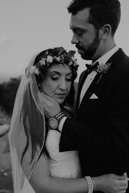 Point Lookout Vineyards Hendersonville North Carolina -Wedding-Renee and Jason-69.JPG
