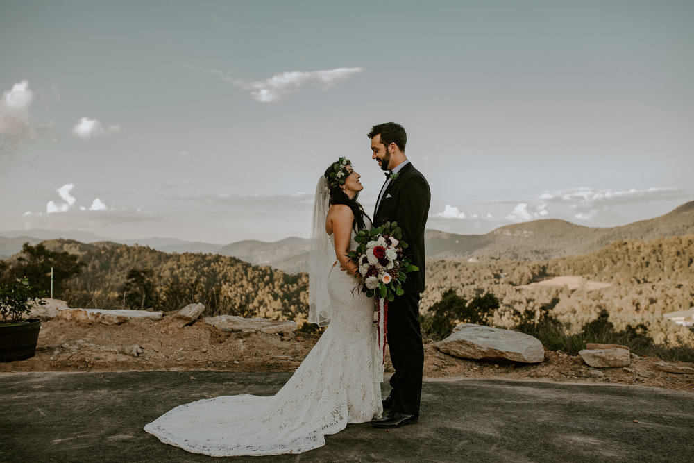 Point Lookout Vineyards Hendersonville North Carolina -Wedding-Renee and Jason-65.JPG