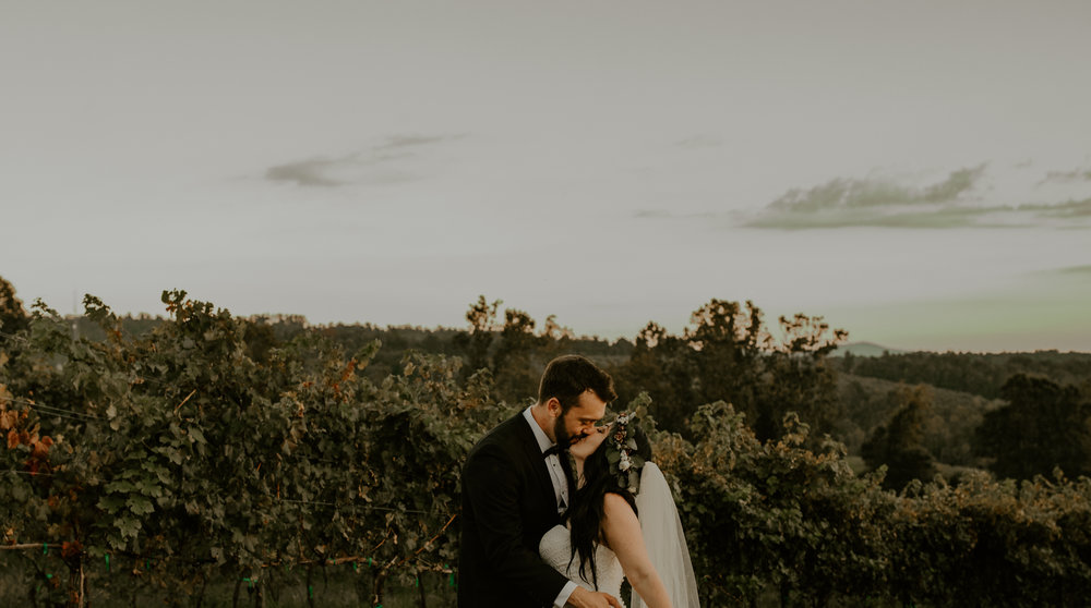 Point Lookout Vineyards Hendersonville North Carolina -Wedding-Renee and Jason-103.JPG