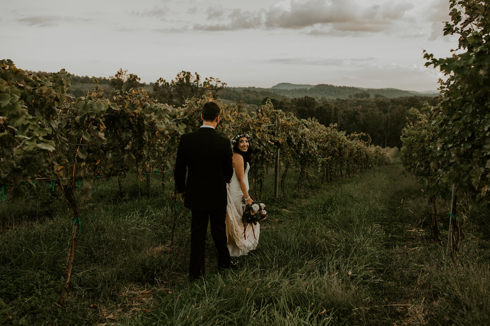 Point Lookout Vineyards Hendersonville North Carolina -Wedding-Renee and Jason-75.JPG