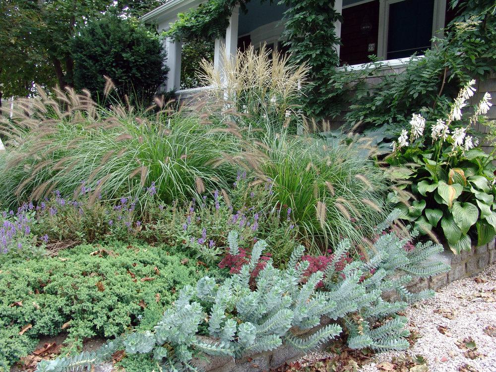 RC-Garden-0318.jpg