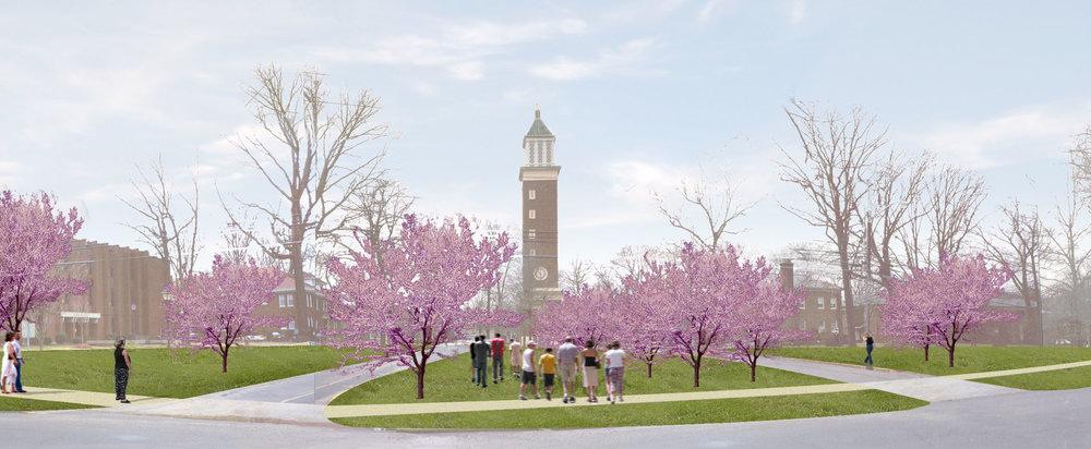 University campus master plan design addressing restoration of quad and tree canopy