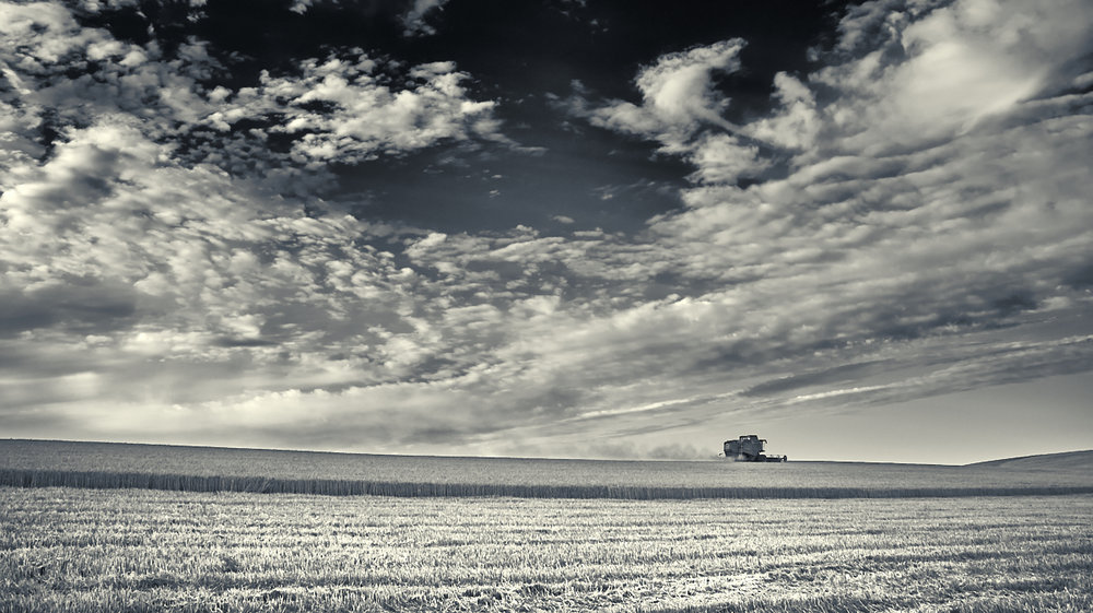 Combine Harvester, South Downs