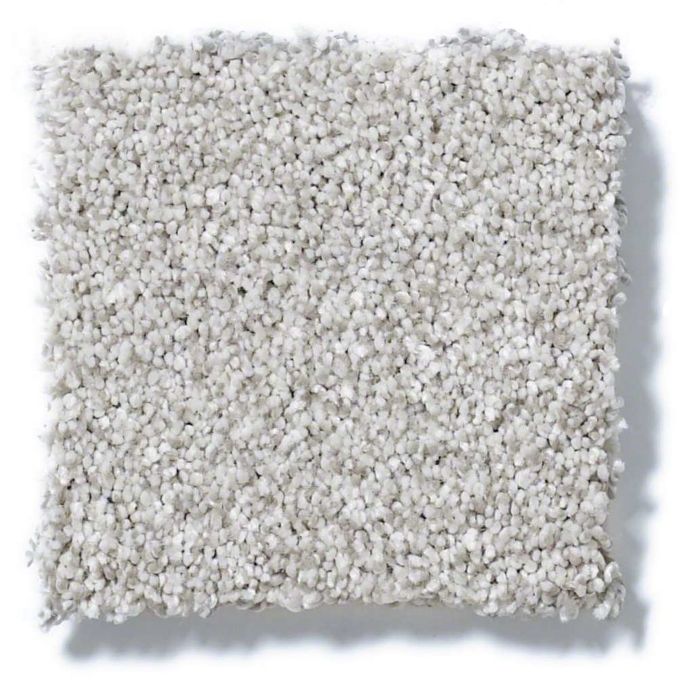 Gastons Floor Covering Carpet 6