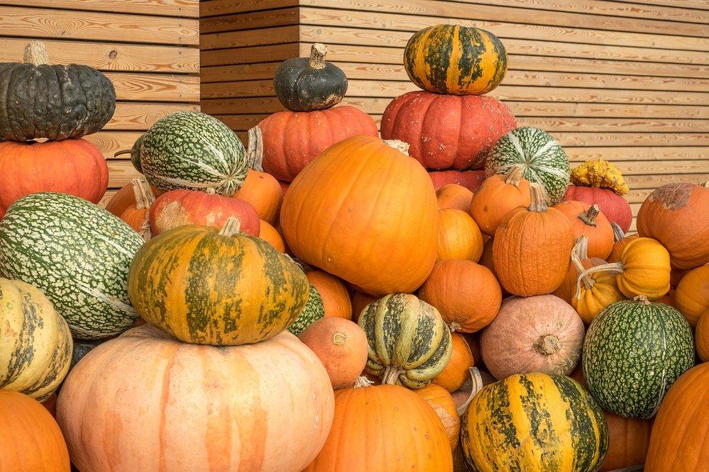 pumpkins-504124_1280.jpg