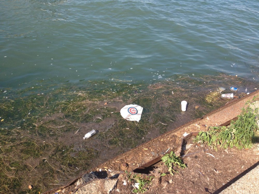 Hunting for plastic pollution in the Great Lakes (Michigan Radio's Environment Report, 2013)