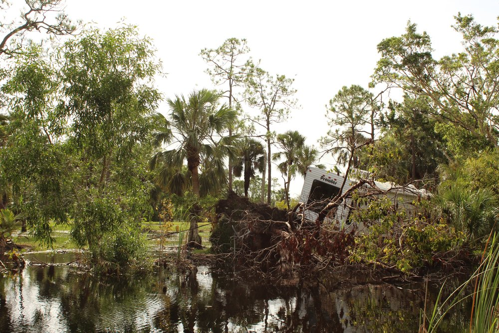 Imagining another world in post-Irma Florida (Scalawag Magazine, 2017)