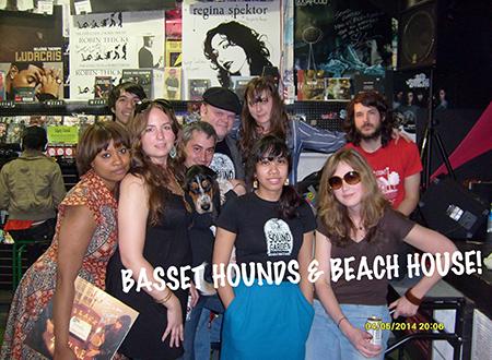 Basset Hounds and Beach House.jpg