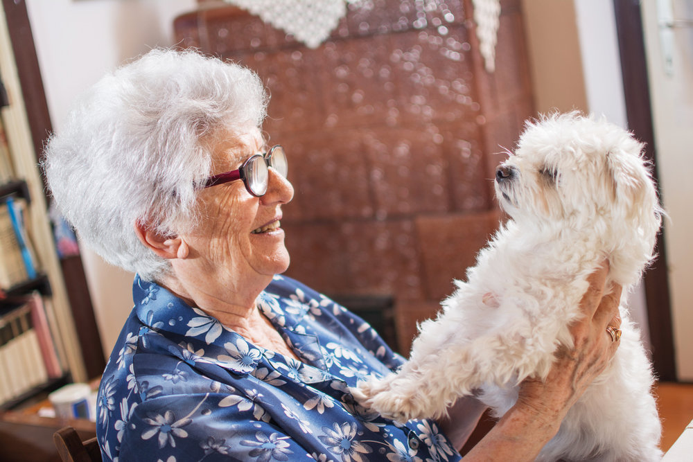 older woman with her dog.jpg