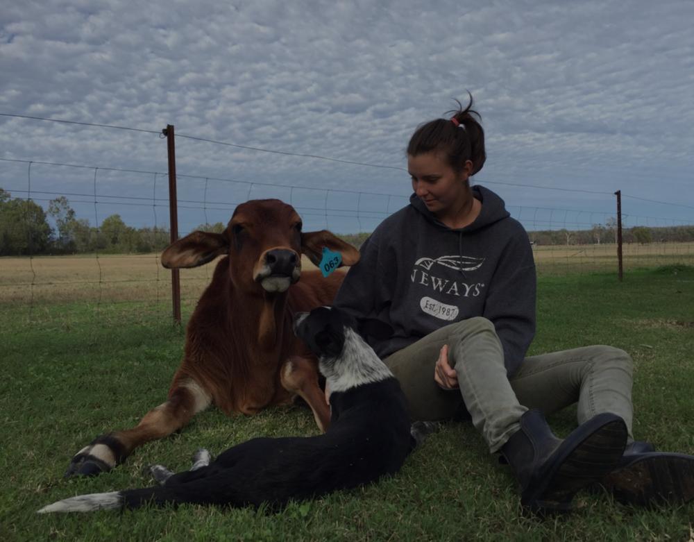 Farmer Melody