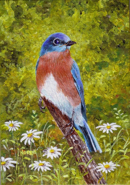 Bluebird and the Wildflowers