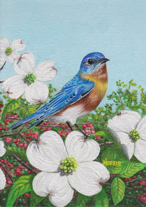 Bluebird and the Dogwoods