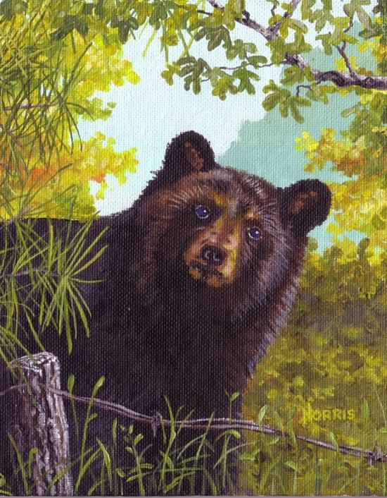 Father Bear