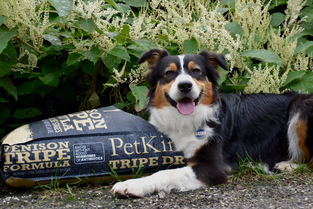 Get 25% off your next purchase of Tripe Dry! -