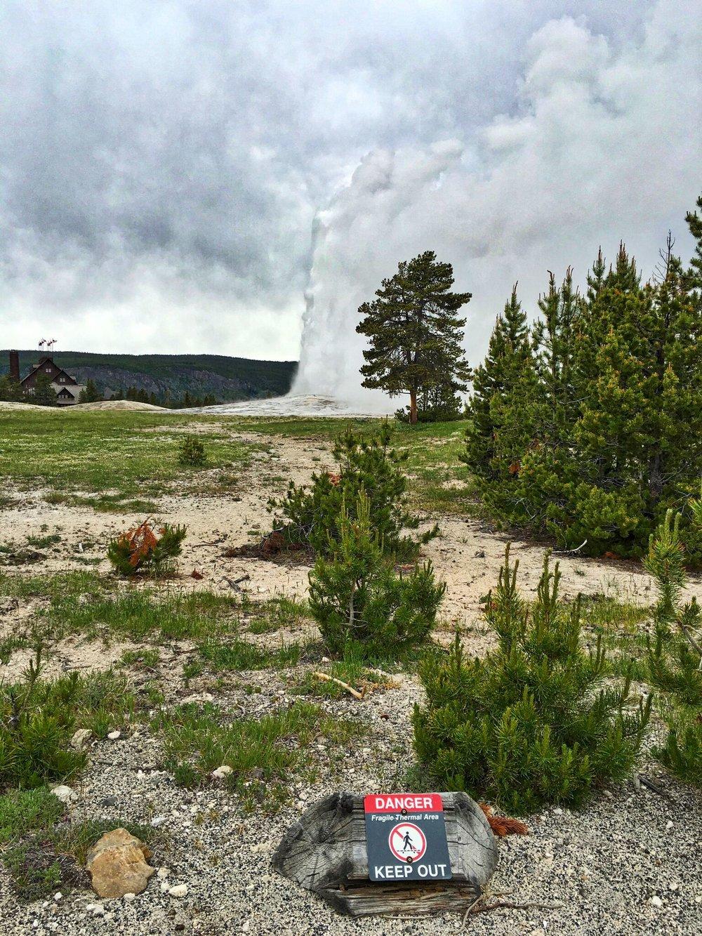 07 Yellowstone 12.jpg