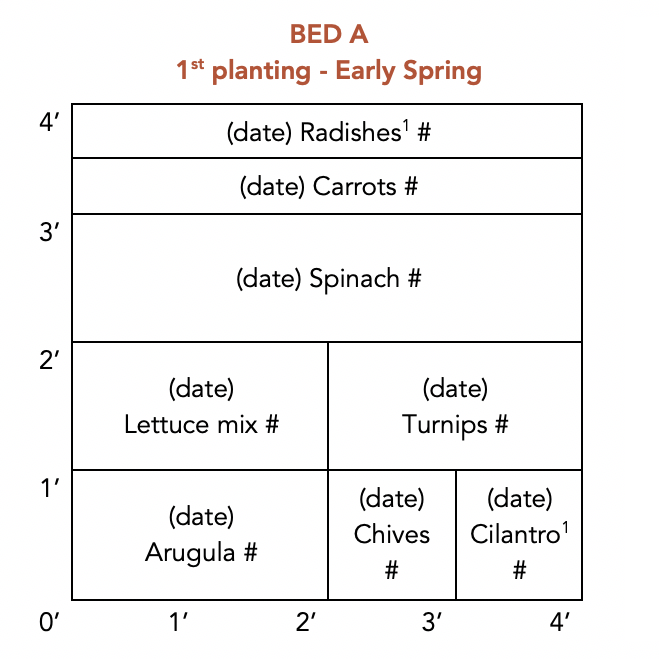 4x4 planting plan_EXAMPLE1.png
