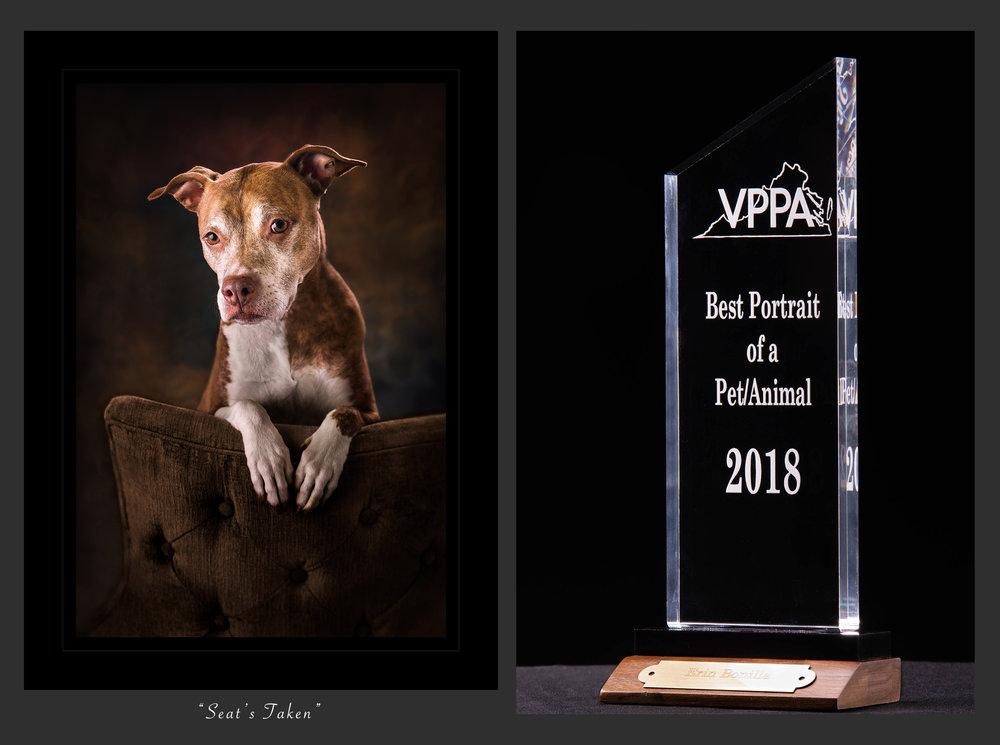 Virginia Professional Photographers Association2018Best Portrait of a Pet/Animal -