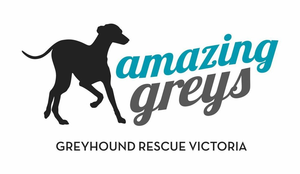 Amazing Greys   Amazing Greys rescues and re-homes greyhounds from the racing industry. We are an 100% volunteer run and funded organisation. Our mission is to save as many greyhounds as possible. Our dream is that one day we won't have to.   amazinggreys.com.au
