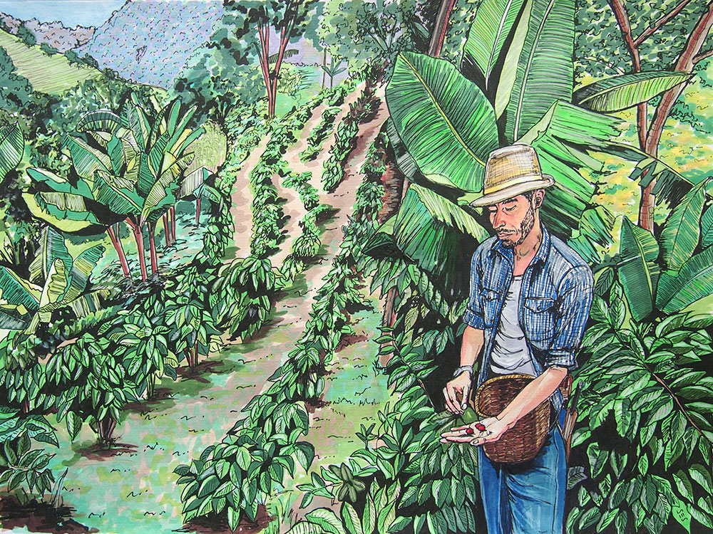 "Farmer in Salento, 11""x14"", 2015"