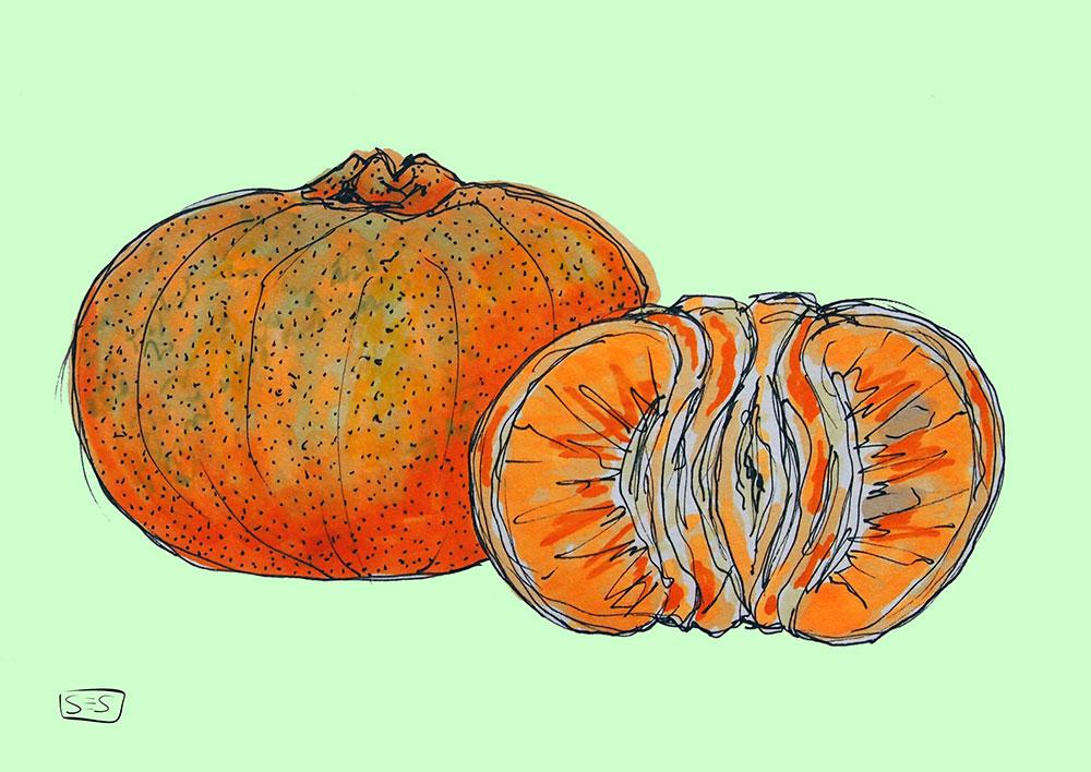 web-mandarina.jpg