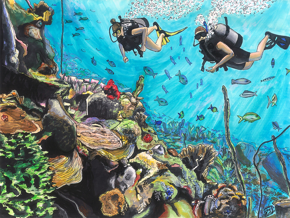 "Diving in las Islas del Rosario, 11""x14"", 2015"