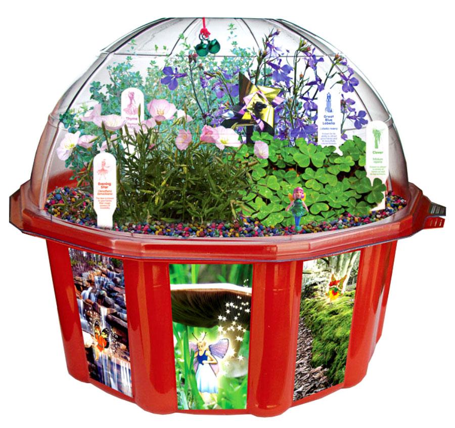 Fairy Triad Dome Terranium
