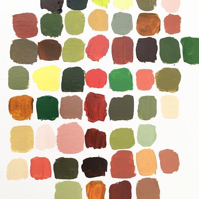 #colorstudy