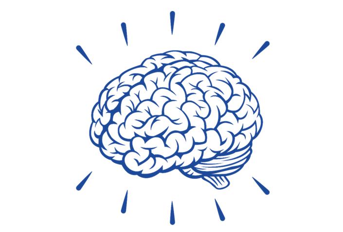 Hjärnan.png