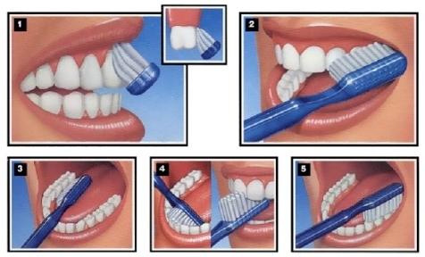 tooth brushing.jpg