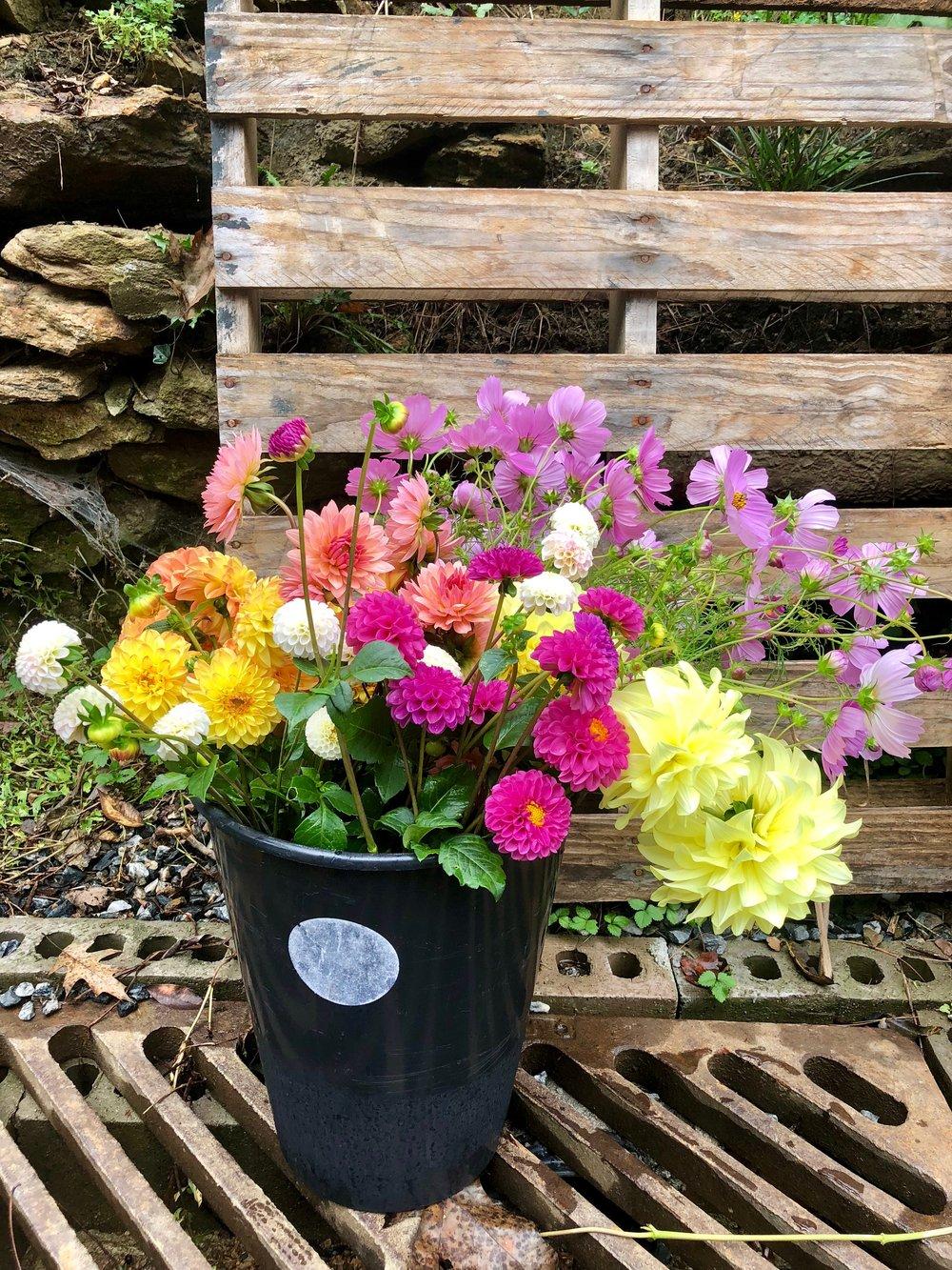 Flowers Bulk Buckets
