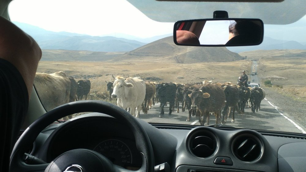 Scenes from an Armenian Road Trip