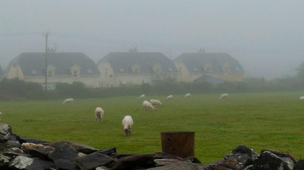 Good morning rural Ireland!