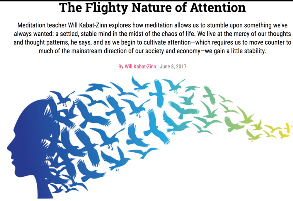 - Brilliant and insightful article on attention, some great nuggets of wisdom in there.'The way we pattern our attention—the paths our attention takes us down, the choices it makes—hugely affects our experience. In a way, it creates our experience'