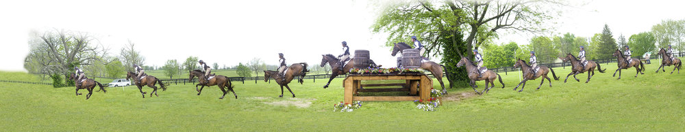 The Owner/Breeder of this horse saw him achieve the pinnacle of Eventing, competing internationally in Europe and Kentucky Three Day. This is a commission for the Owner's 80th Birthday. -
