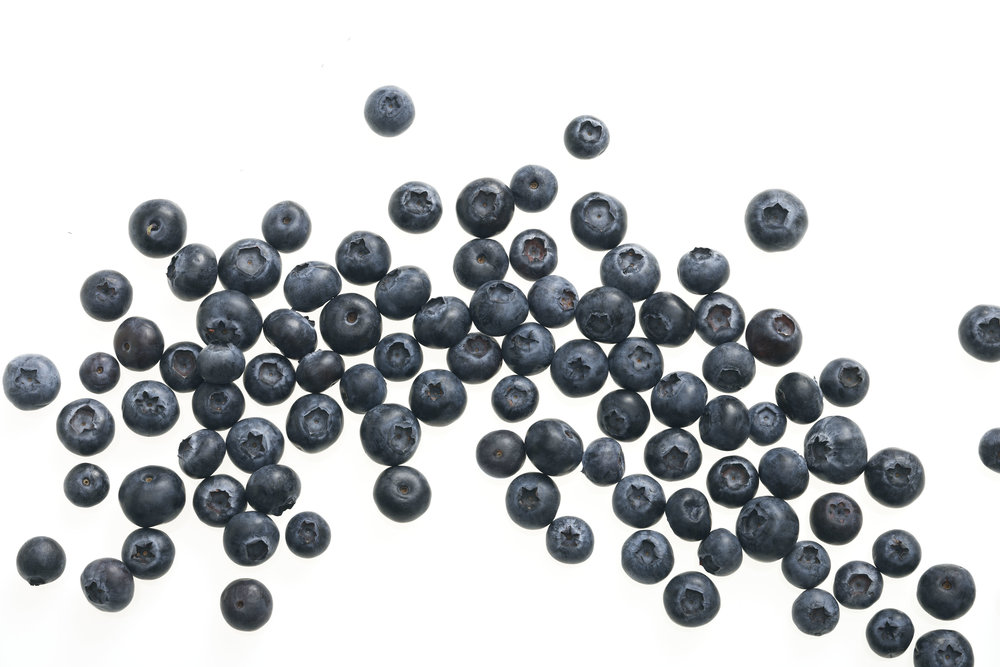 Blueberries 023.jpg