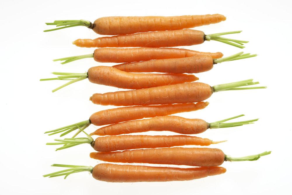 Carrots 044.jpg