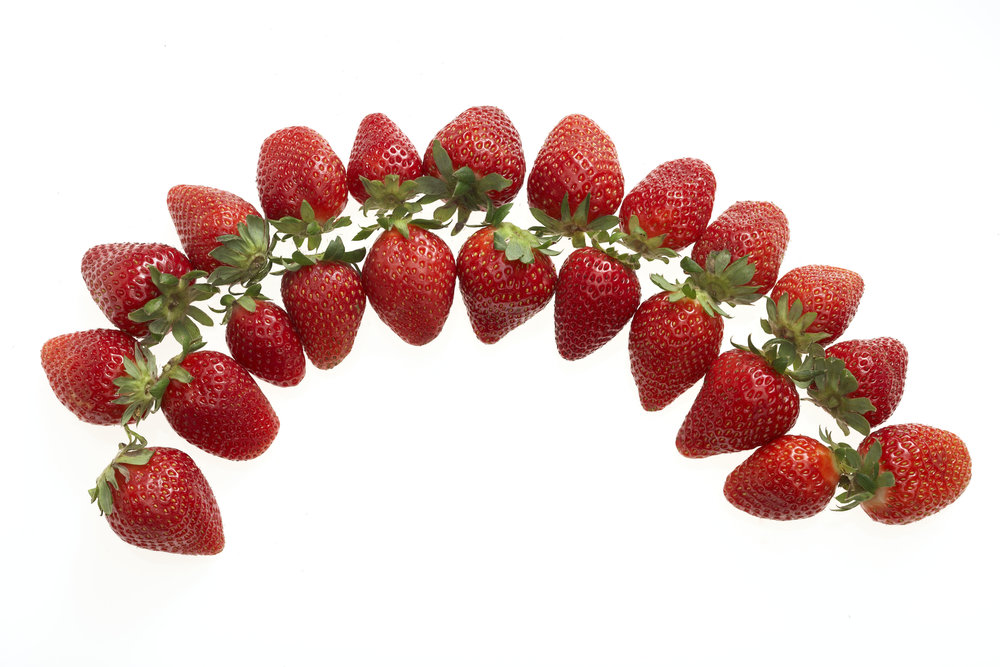 Strawberries 021.jpg