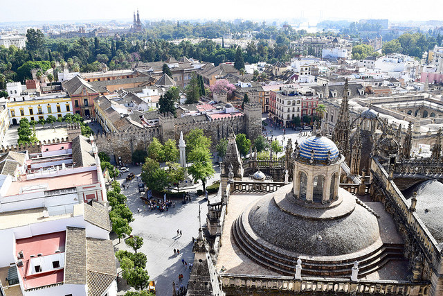 View of Seville from the Cathedral