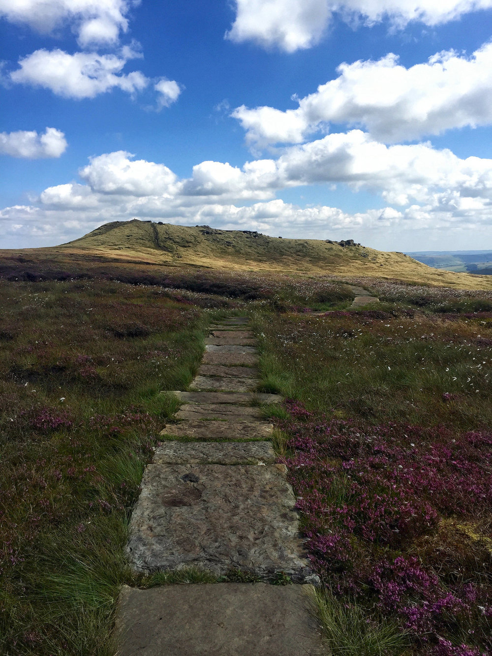 Path in the Peaks