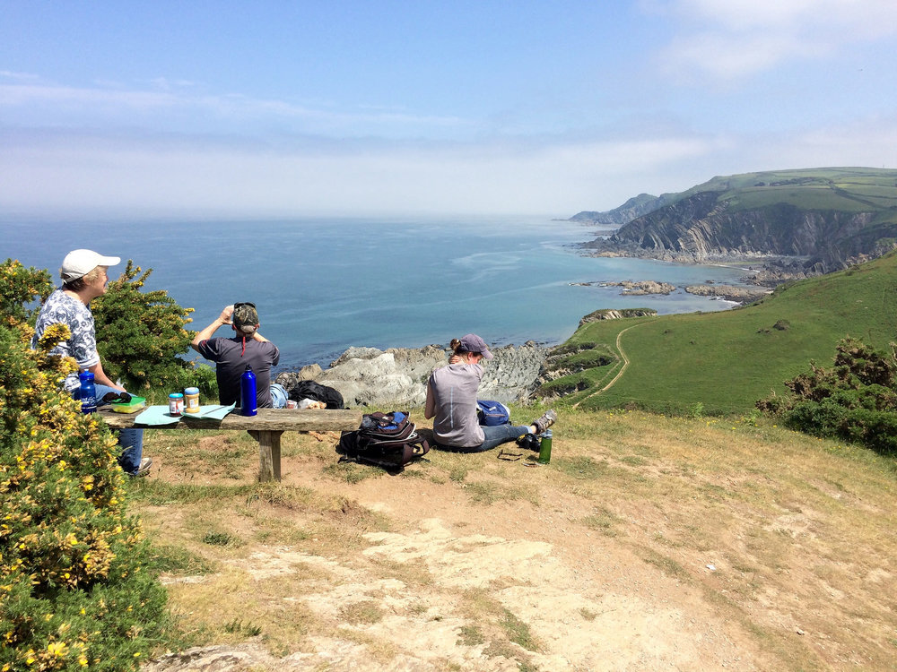 Picnic Lunch in Devon