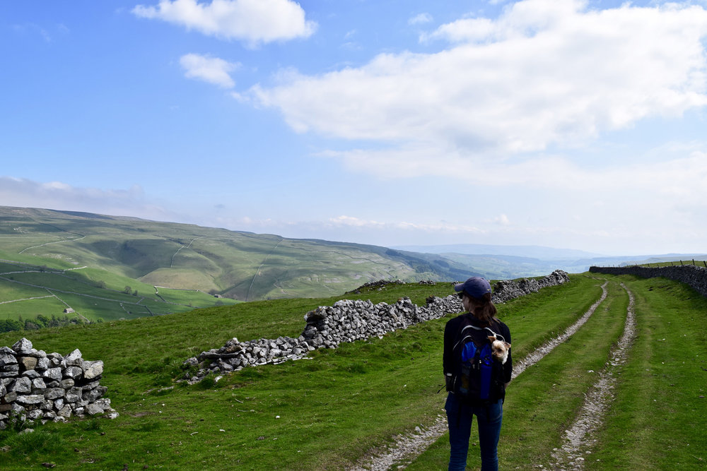 Walking the Dales