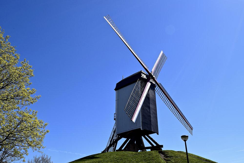 Molen (Windmill)