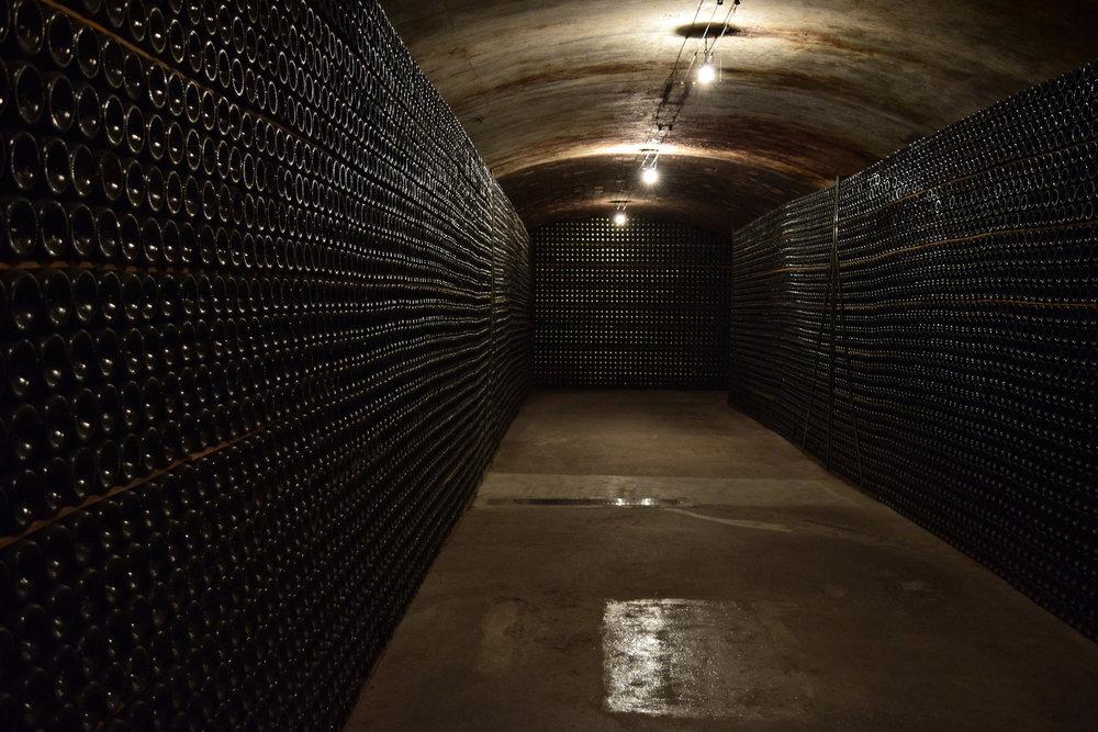 Freixenet Cellars