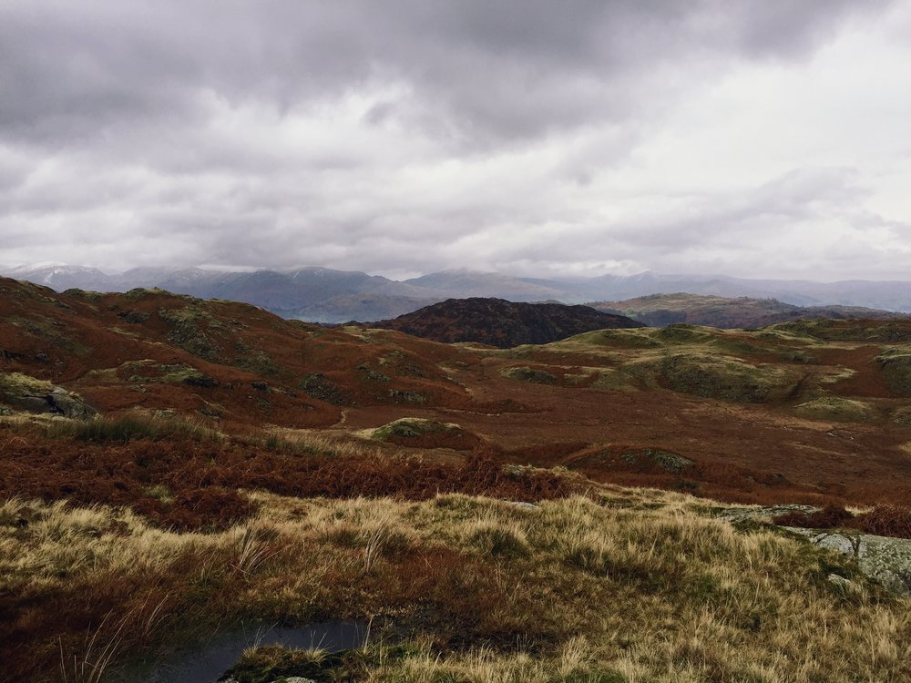 Soggy Boggy Mountains