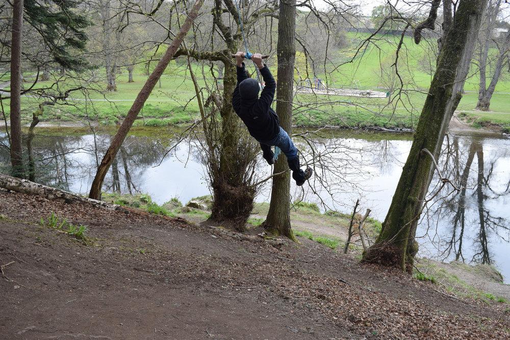 Connor swinging.jpg