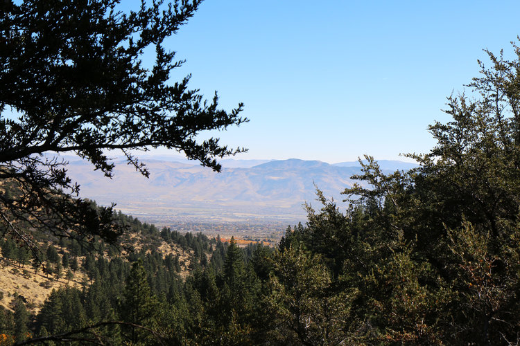 The BEST trails in Nevada. Dry Pond Hike | 6.8 miles near Reno, Nevada