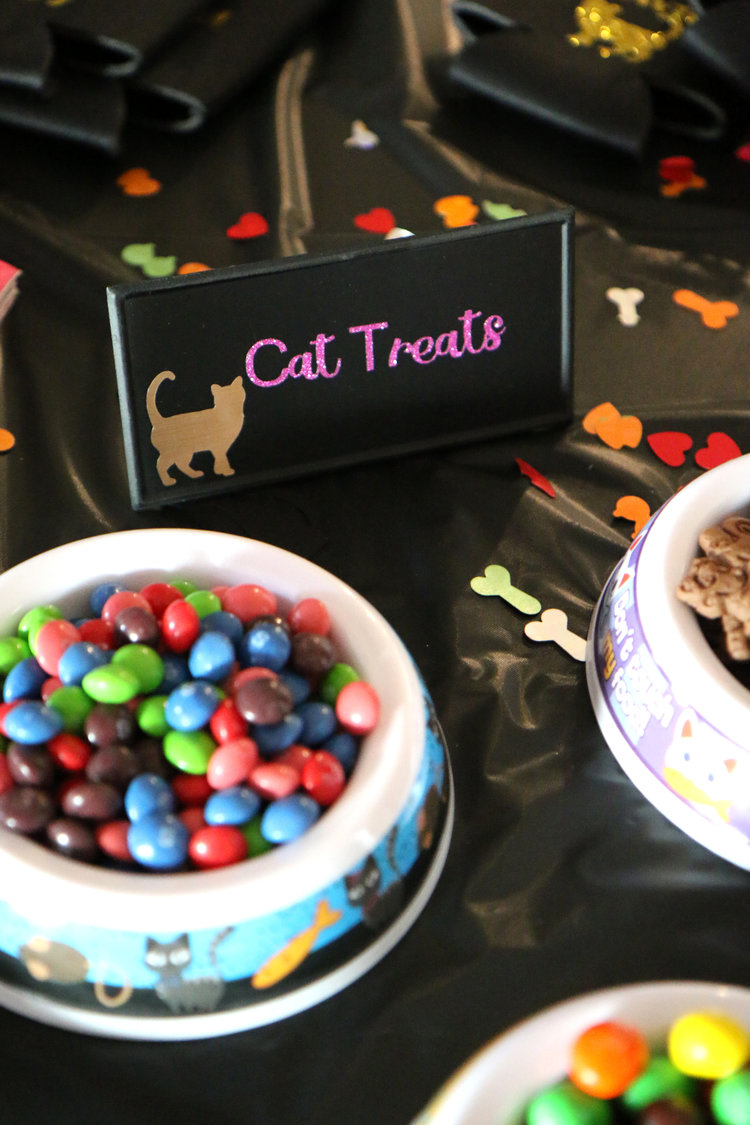 Ideals for a homemade DIY bachelorette party that is cat themed