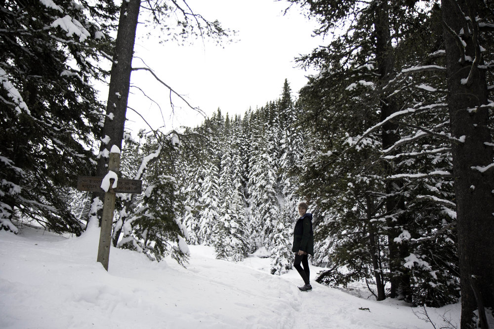 Go on a winter hike with blogger Bri Sul
